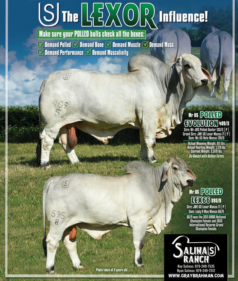 Salinas Ranch TBJ June ad
