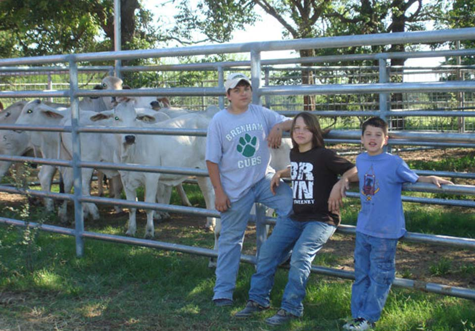 Salinas Ranch gray brahman gallery kids with cattle